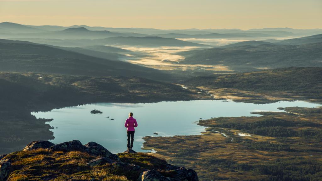 Blåfjella-Skjækerfjella nasjonalpark