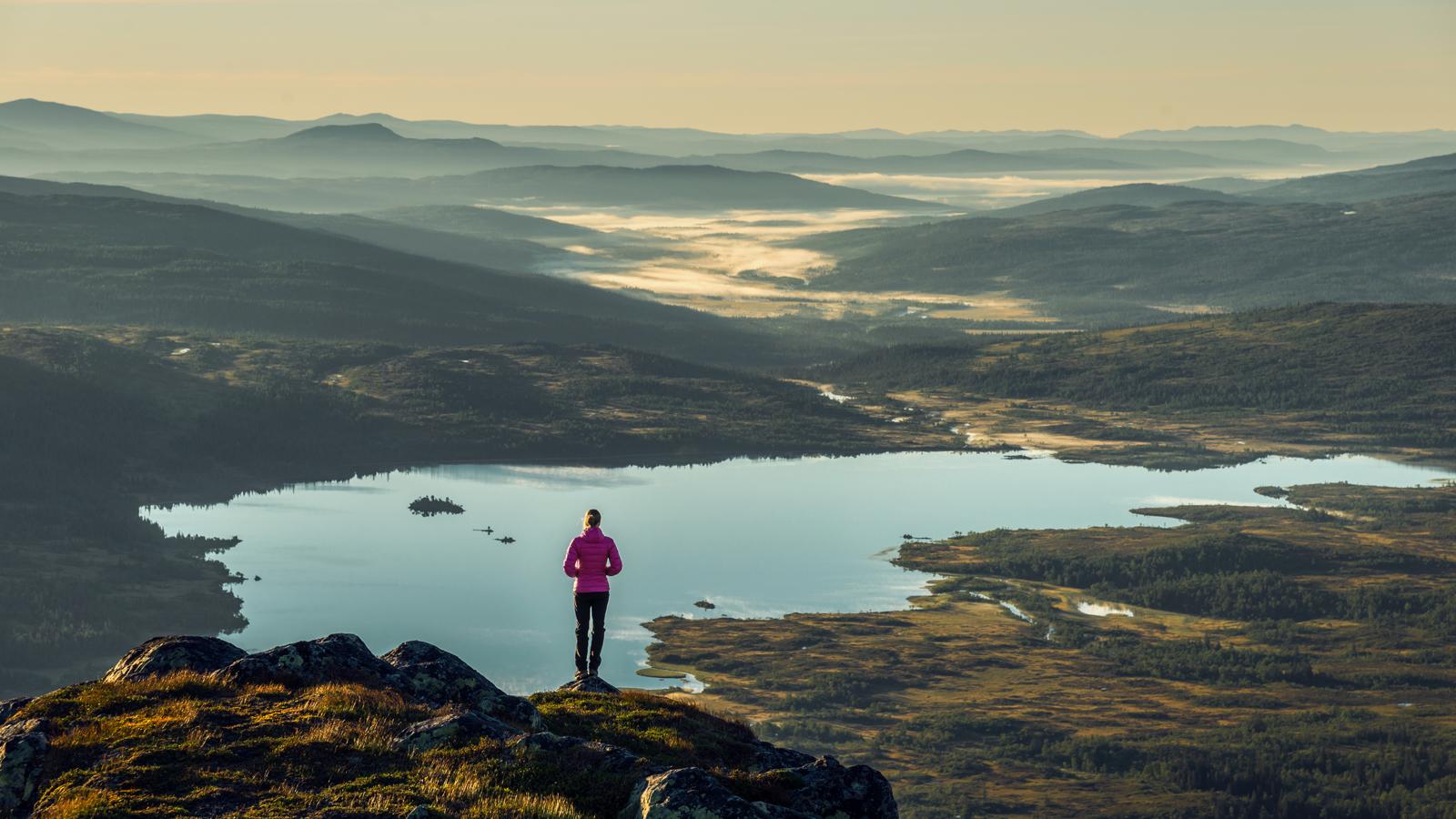 Utsikt på toppen av Lakavasshatten i Blåfjella-Skjækerfjella Nasjonalpark. Foto: Bernartwood / trondelag.com