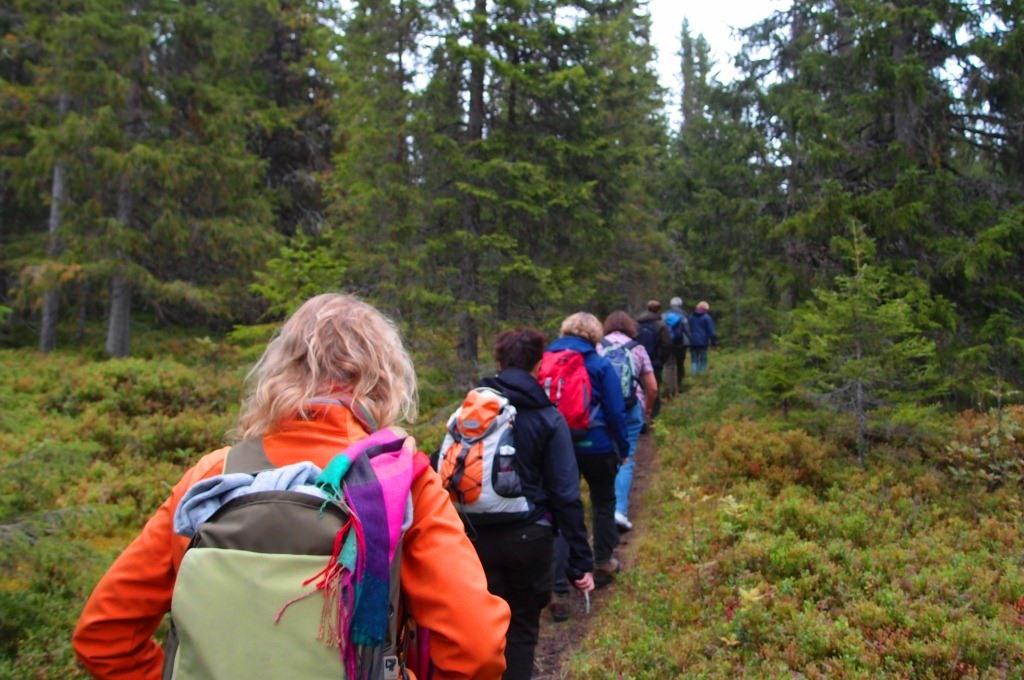 Trondheimsregionen_Skaun_pilegrimsvandring til Kleivan pilegrimsherberge_Foto: Runa Eggen