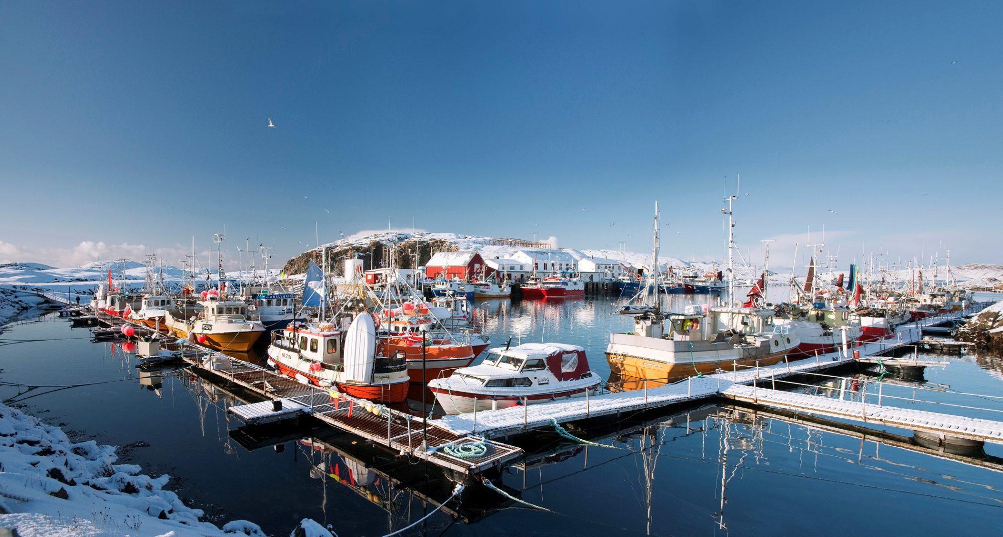 Vandsøya. Foto: Steinar Johansen