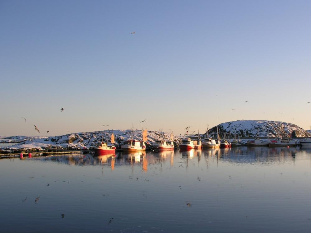 Festivalstemning i vinter-Trøndelag