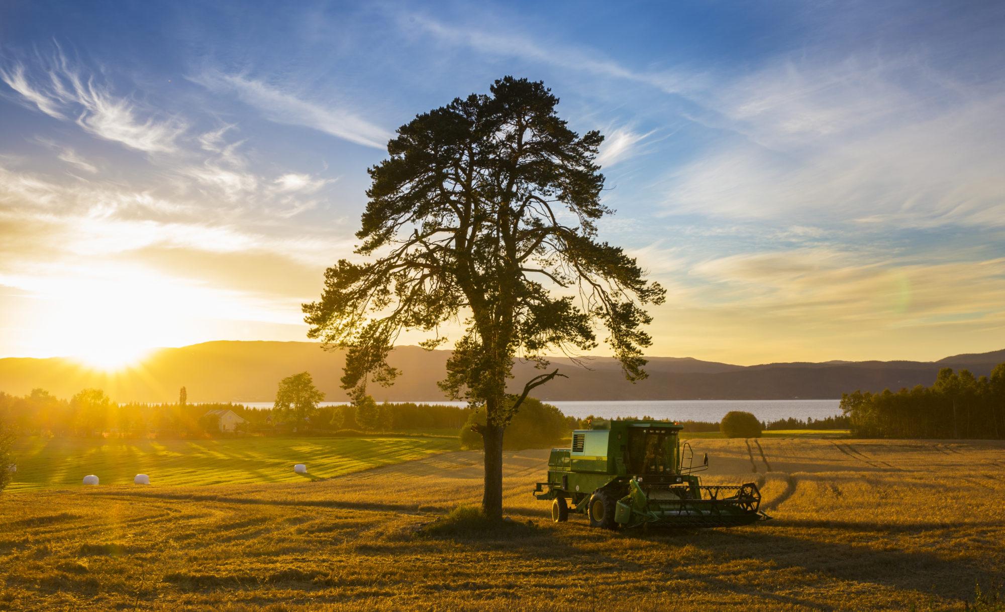 En høstdag på Inderøy. Foto: Lena Johnsen