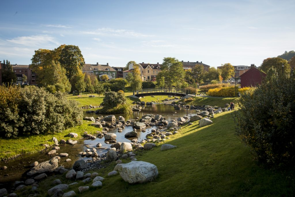 Iladalen park i Trondheim. Foto: Jan Ove Iversen - overpari.no /trondelag.com